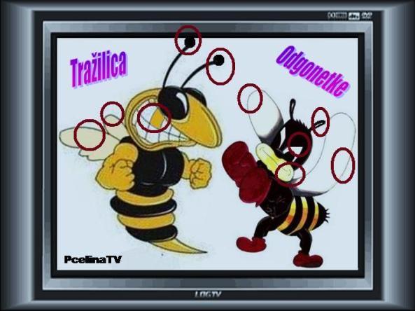 Pcelina TV