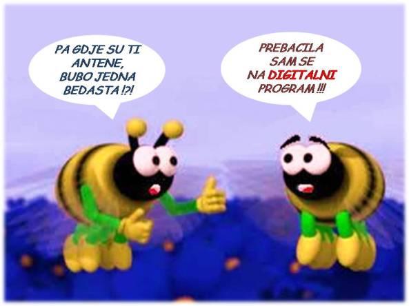 VIC O ANTENAMA
