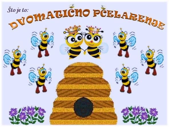 Što je to DVOMATIČNO PČELARENJE
