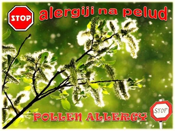 POLLEN ALLERGY STOP